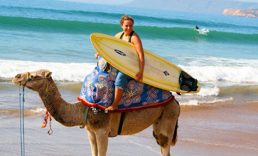 omega tour fes medina, travel agency