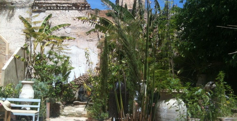 ruined garden fes medina fez