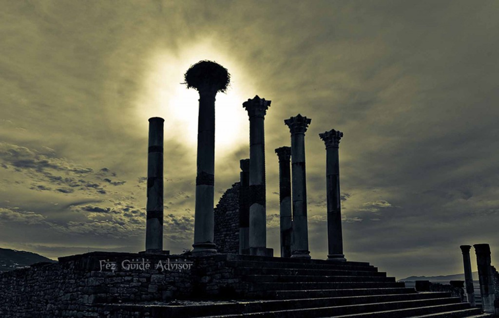 the roman ruines of volubilis,Meknes city