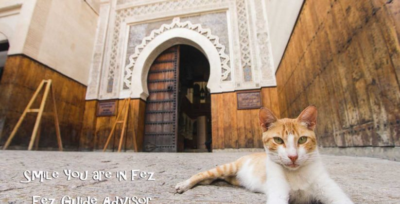 Nejjarine Museum of Wooden Arts & Crafts in Fez city - fes medina